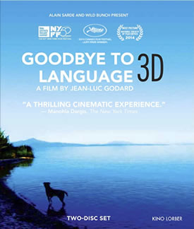 Goodbye to Language DVD cover